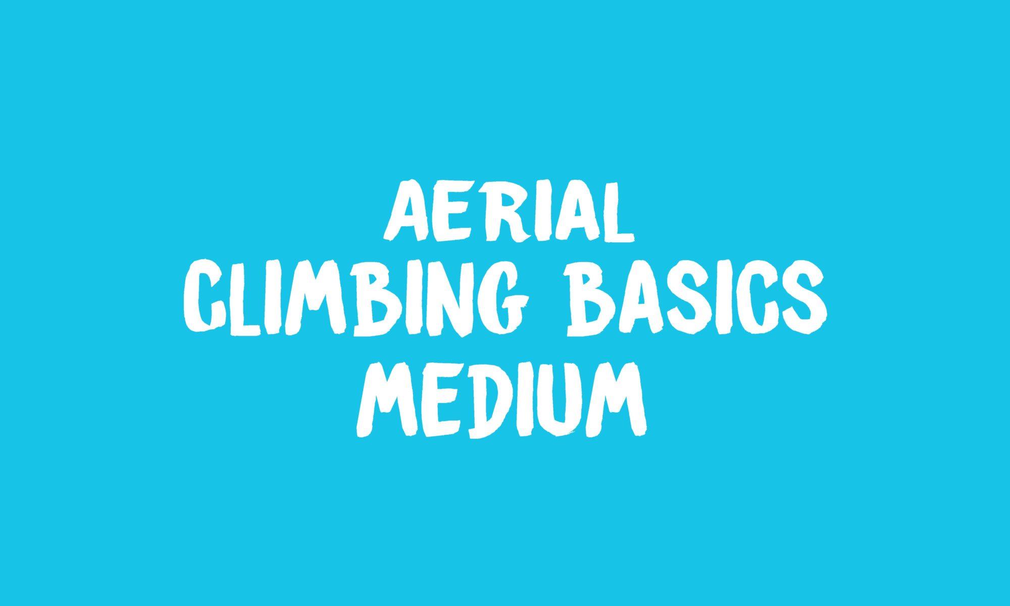 Aerial Climbing Basics banner
